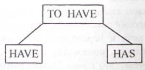 Схема глагола to have в настоящем