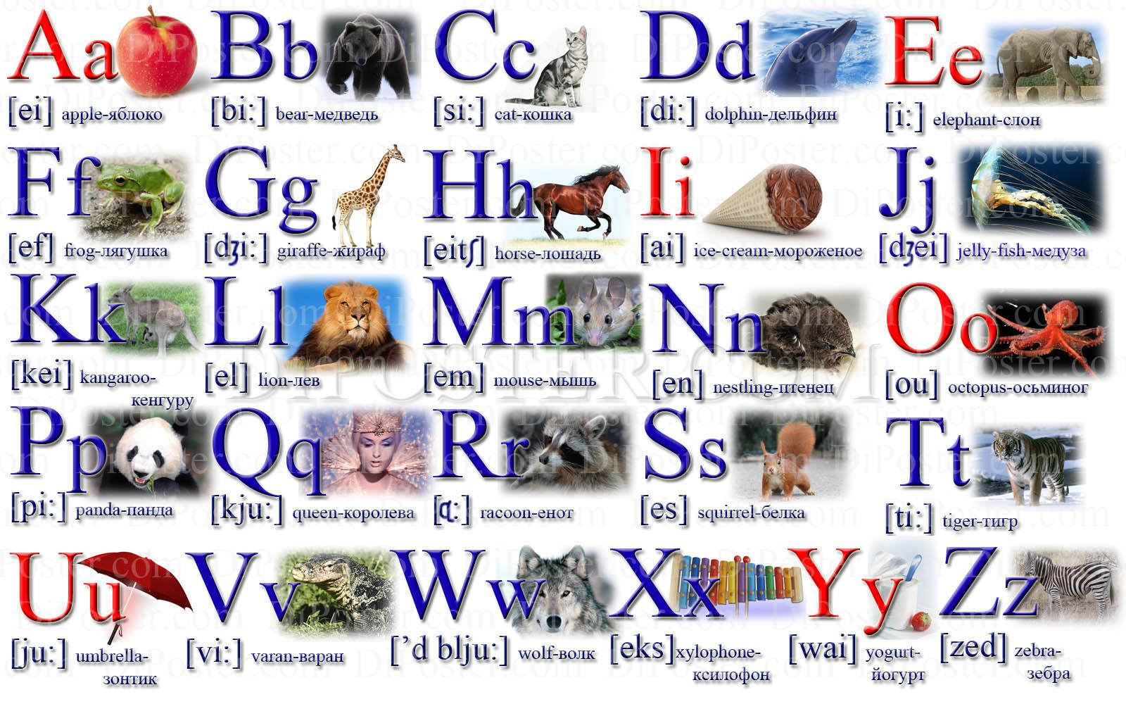 Английский алфавит транскрипция английских слов